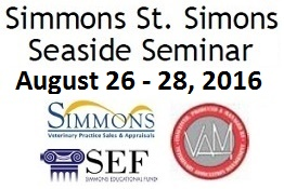 Simmons St. Simons Seaside Seminar