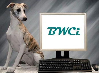 BWCi Animal Hospital Management System